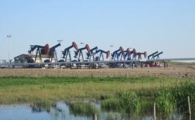 Borehole Mining Oil